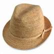 Natural de moda Straw Hat Fedora
